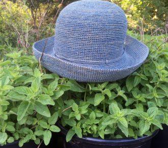 Køb din Helen Kaminski hat hos Anholt Gartneri