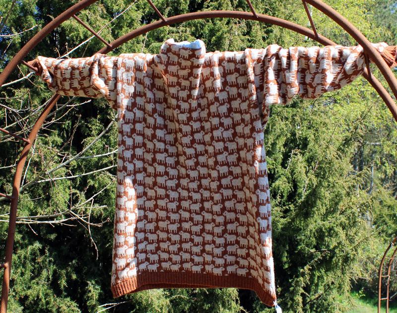 Sweater med fåremotiv fra Anholt Gartneri