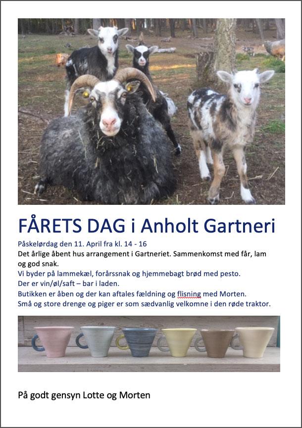 Fårets dag på Anholt Gartneri